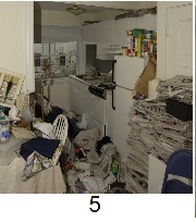 hoarding_kitchen_5