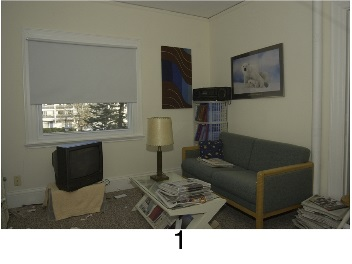 hoarding_living_room_1