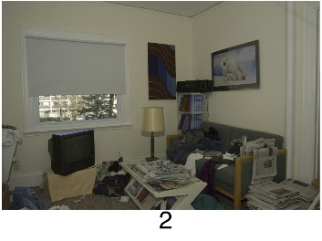 hoarding_living_room_2