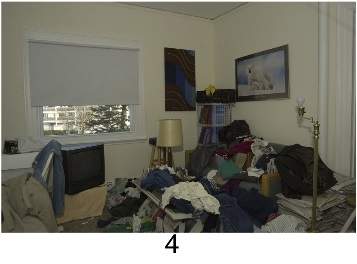 hoarding_living_room_4